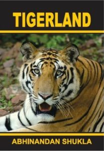 tigerland cover